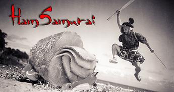 Hamsamurai_banner_BETTER
